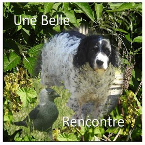 CHALLENGE SCRAP LIFT - UNE BELLE RENCONTRE