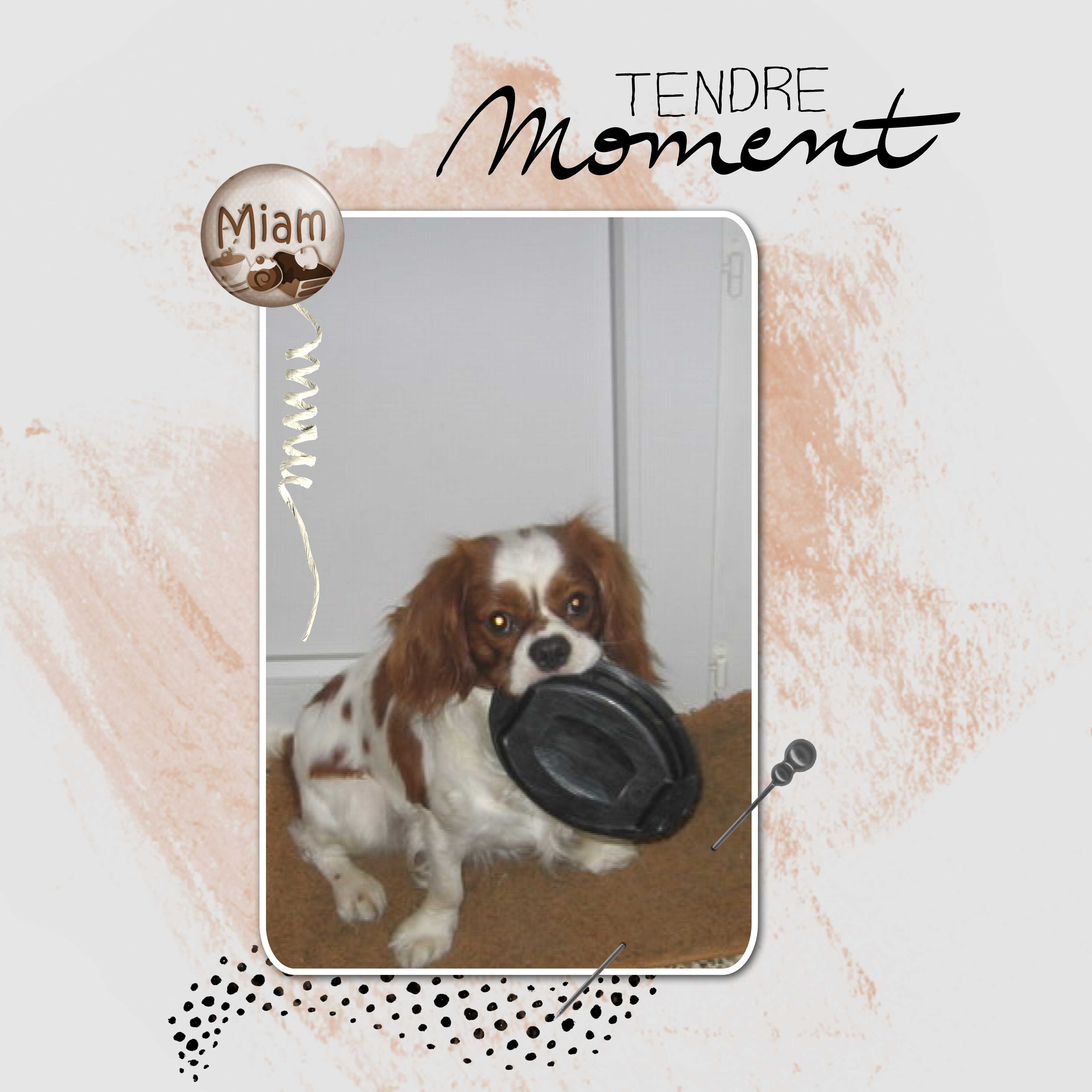 20-9-13c-TEMPLATE TENDRE MOMENT.jpg